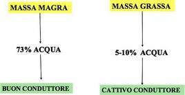 Caratteristiche conduttive della massa magra e grassa.