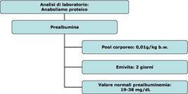 Parametri relativi alla prealbumina.