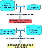 Bilancio energetico positivo e negativo.