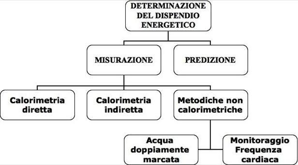 Classificazione delle metodiche di valutazione della spesa energetica.