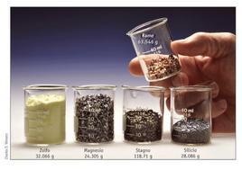 Una mole di elementi comuni. Fonte: Kotz, Treichel, Townsend, Chimica, III ed., EdiSES