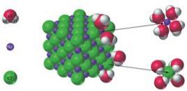 Nel processo di dissoluzione di Na+Cl- in acqua, gli ioni Na+ e Cl- sono completamente circondati da molecole di acqua. Fonte: lezioni del Prof. Ali, Southeast Missouri State University