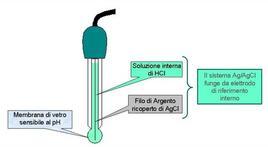 Elettrodo a vetro per la misura del pH