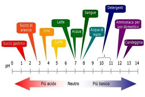 Valori di pH di alcune soluzioni acquose che si incontrano nell'esperienza di tutti i giorni
