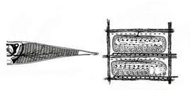 Organo elettrico e placche elettriche. Fonte: modificata da Leghissa
