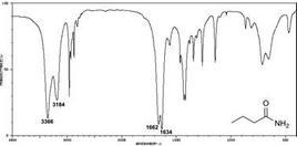 Spettro IR della butirrammide
