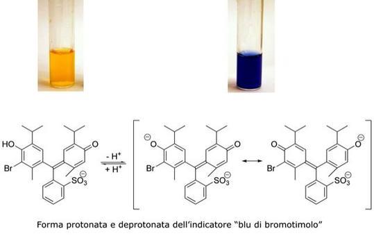 """Forma protonata e deprotonata dell'indicatore """"blu di bromotimolo"""""""
