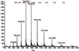 Spettro di massa ESI del citocromo C, MW ≈ 15900