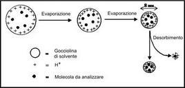 Principio di funzionamento dell'electrospray: formazione degli ioni