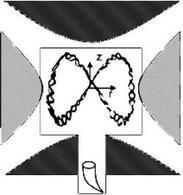 Gli ioni percorrono una complessa traiettoria a spirale e rimangono intrappolati nella trappola