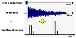 La trasformata di Fourier (FT) permette di ricavare le frequenze della varie rf