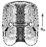 I protoni degli alcheni sono deschermati dagli elettroni π