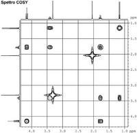 Ai lati degli spettri 2D sono spesso rappresentati gli spettro 1D.