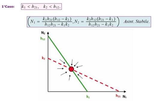 Figura 13.2: La quarta configurazione di equilibrio esiste ed è asintoticamente stabile.