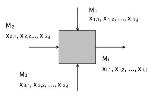 Rappresentazione schematica di un generico bilancio di massa