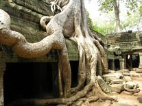 Angkor Vat (Cambogia) (from © UNESCO / F. Bandarin).