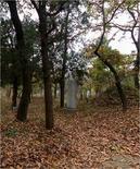 La stele che segna la tomba di Confucio nel Cimitero di Qu Fu, VI-V sec. a.C. (Cina) (UNESCO )