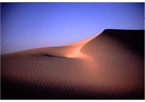 Il Grande Mare di Sabbia, Sahara orientale (Egitto). Foto di Corinna Rossi