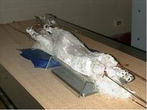Fascio verticale: decubito dorsale con arti posteriori iperestesi
