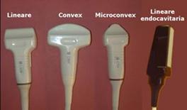 …queste sono quelle di uso comune in campo Veterinario