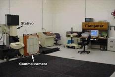 Es. di organizzazione di laboratorio di MN per cavalli