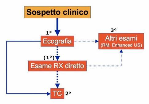Algoritmo diagnostico del fegato