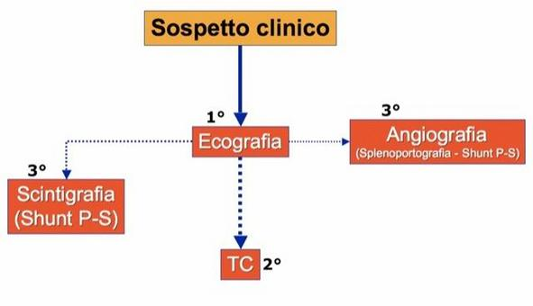 Algoritmo diagnostico dei grandi vasi