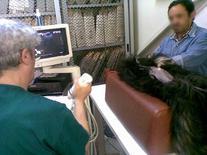 Paziente posizionato e preparato per lo studio ecografico dell'addome