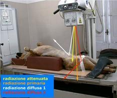 Possibilità di interazione tra raggi X e paziente