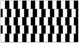 Esempio di illusione ottica. Le linee nell'immagine sono dritte anche se sembrano storte