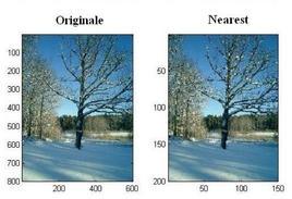"""Esempio dell'applicazione del metodo di interpolazione """"nearest neighbord""""."""
