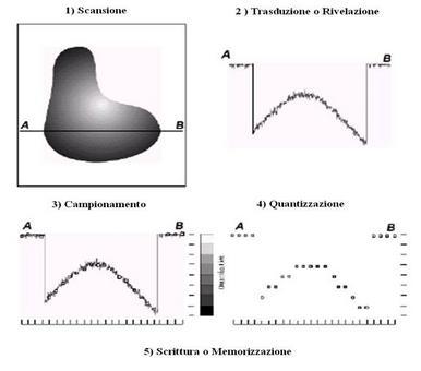 Fasi del processo di acquisizione: 1) Scansione, 2) Rivelazione, 3) Campionamento, 4) Quantizzazione e 5) Memorizzazione.