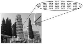 Esempio di immagine a livelli di grigio.