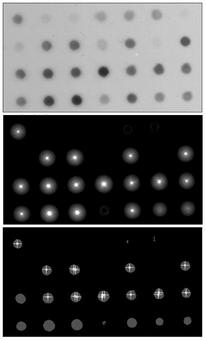 Applicazione della trasformata di Houge per trovare il centro  dei dots presenti nell'immagine di partenza.
