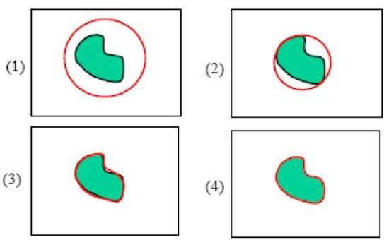 "Esempio del funzinamento dell'algoritmo ""snakes""."