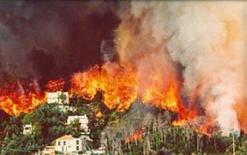 Effetti degli incendi sulle aree urbane. Fonte: Comune di Modena