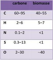 Tipici valori per un'analisi elementale di carbone e biomassa (dati in % in peso).