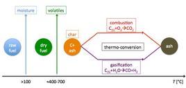 Destino di una particella di combustibile soggetta a combustione/gassificazione.