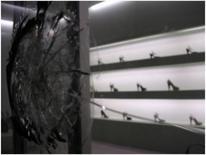 Immagini degli atti di vandalismo seguiti alla inaugurazione di Prada Marfa