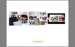 Pagina di un Trend Book relativo ad una ricerca cromatica