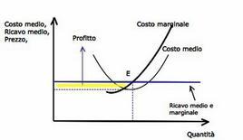Figura 2. Equilibrio dell'impresa