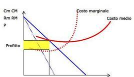 Figura 3. Rappresentazione grafica del profitto medio e totale.