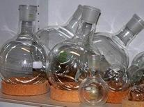 Round-bottomed flasks. Source:  Wikipedia