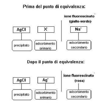 Fonte: Facoltà di Farmacia- Università di Catania.