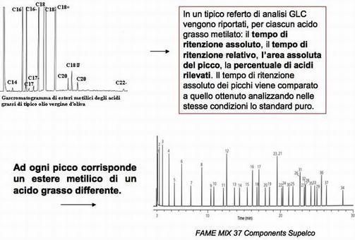Fonte: Istituto Tecnico Leonardo Da Vinci