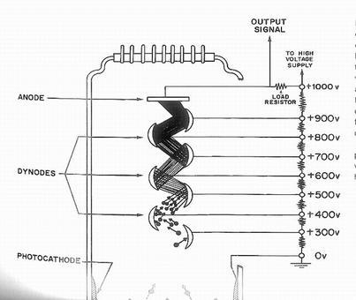 Medicina Nucleare: strumentazione. Fototubo