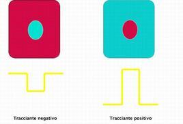 Tracciante negativo e positivo