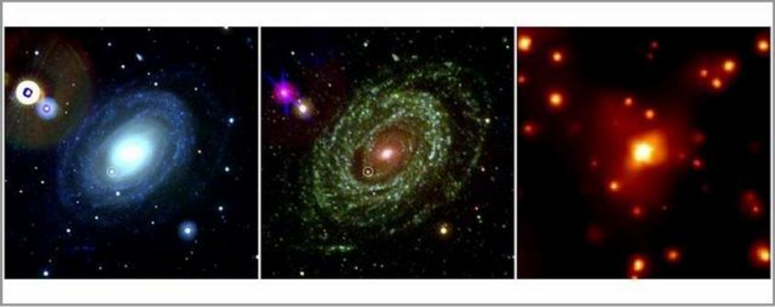 Galaxies emit in X-rays due to the contribution of hot gas, supernova remnants, binary accreting systems and supermassive Black Holes at their center. This image shows the optical(left), UV (center) and X-ray (right) view of a Spiral galaxy. The small circle marks the position of Supernova Ia 2005ke. 