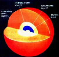 The internal structure of a massive star with a carbon core.