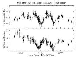 Reverberation mapping lightcurves
